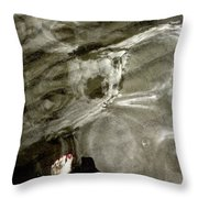 Looking Glass Throw Pillow
