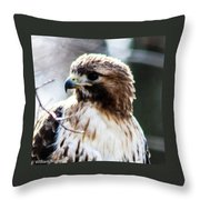 Looking Good Throw Pillow