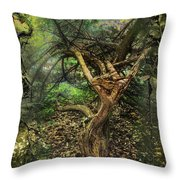 Looking Grimm Throw Pillow