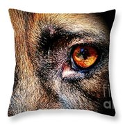 Looking Into My Soul Throw Pillow