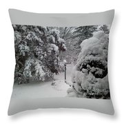 Looking Out My Front Door Throw Pillow