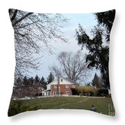 Looking Out Over The Horse Farm Throw Pillow