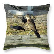 Looking Over The Frenzy Throw Pillow