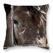 Looking Through The Web Throw Pillow