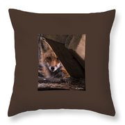 Looking Through The Woodpile Throw Pillow