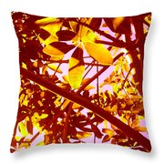 Looking Through Tree Leaves 2 Throw Pillow
