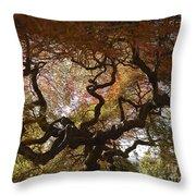 Looking Thru A Japanese Maple Throw Pillow