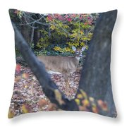 Looking Thru The Trees Throw Pillow