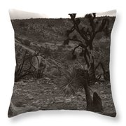 Looking To The Earth Throw Pillow