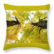 Looking Up At Fall Throw Pillow