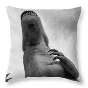 Looking Up At T-rex Throw Pillow