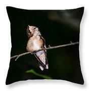 Looking Up - Hummingbird Throw Pillow