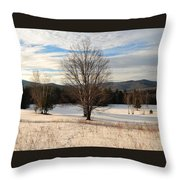 Looking West Late Afternoon Throw Pillow