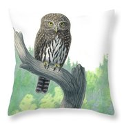 Lookout- Northern Pygmy-owl Throw Pillow
