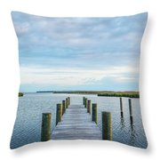 Looks Like A Sea Day Throw Pillow