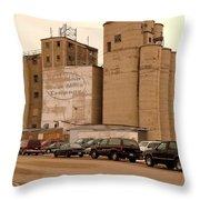 Looks Like Grain Throw Pillow