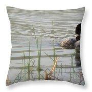 Loon On A Northern Minnesota Lake Throw Pillow