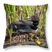 Loon On The Nest Throw Pillow