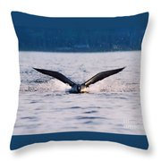 Loon Take Off Aborted Throw Pillow