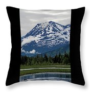 Looned View Throw Pillow