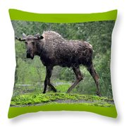 Loose Moose Throw Pillow
