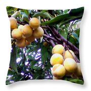 Loquats In The Tree 1 Throw Pillow