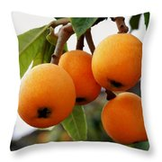 Loquats In The Tree 2 Throw Pillow