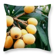 Loquats In The Tree 3 Throw Pillow
