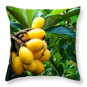 Loquats In The Tree 4 Throw Pillow