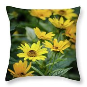 Loraine Sunshine 2 Throw Pillow