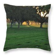 Los Angeles National Cemetary Throw Pillow