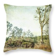 Losing A Part Of Oneself Throw Pillow