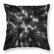 Lost Among The Bamboo Throw Pillow