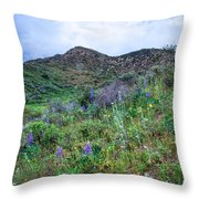 Lost Canyon Wildflowers Throw Pillow