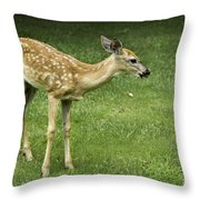 Lost Fawn Throw Pillow