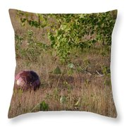 Lost Football Throw Pillow