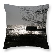 Lost For Words Throw Pillow