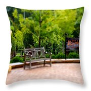 Lost Hollow Throw Pillow