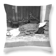 Lost Hopes Throw Pillow