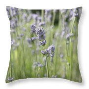 Lost In Nature Throw Pillow