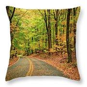 Lost In Pennsylvania Throw Pillow