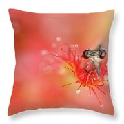 Lost In Red Throw Pillow