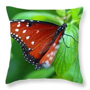 Lost In Temptation Throw Pillow