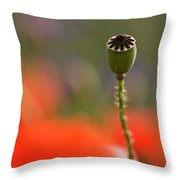 Lost In The Field Throw Pillow
