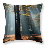Lost In The Light Throw Pillow