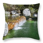 Lost In The Rhythm Throw Pillow