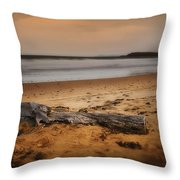 Lost Log 002 Throw Pillow