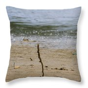 Lost Message In A Bottle 2 Throw Pillow