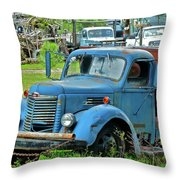 Lost Pride Throw Pillow