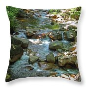 Lost River 1 Throw Pillow